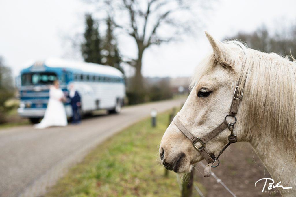 Wedding Goor 15
